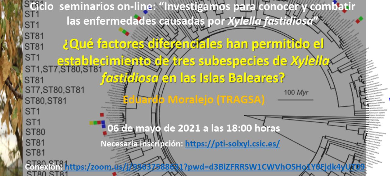 ¿Qué factores diferenciales han permitido el establecimiento de tres subespecies deXylella fastidiosaen las Islas Baleares?