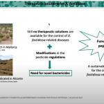 Seminario 01 de julio de 2021 disponible en el canal «Soluciones a Xylella fastidiosa»
